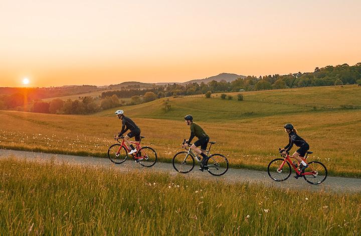 Gutschein Rose Bikes