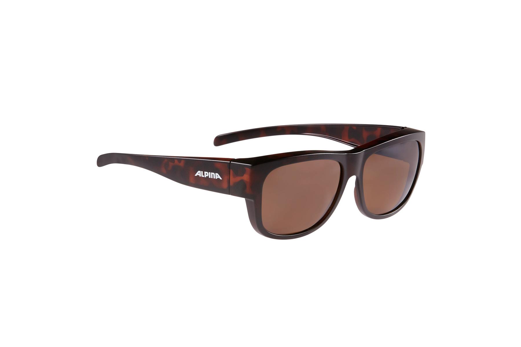 ALPINA OVERVIEW II P Brille kaufen | ROSE Bikes